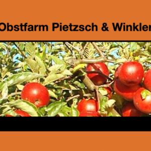 Logo Pietzsch & Winkler
